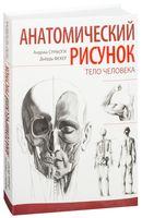 Анатомический рисунок. Тело человека