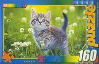 """Пазл """"В мире животных. Милый котенок"""" (160 элементов)"""