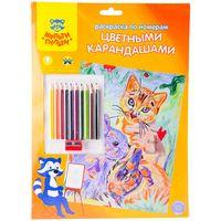 """Раскраска по номерам """"Домашние питомцы"""" (с цветными карандашами)"""