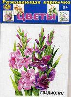 Цветы (13 карточек)