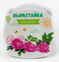 """Набор для выращивания растений """"Бальзамин"""""""