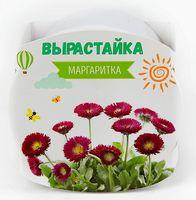 """Набор для выращивания растений """"Маргаритка"""""""