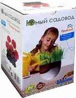 """Набор для выращивания растений """"Юный садовод: Пеларгония. Палитра красок"""""""