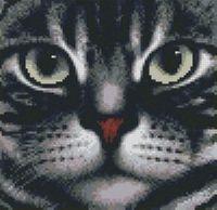 "Алмазная вышивка-мозаика ""Мордочка кота"" (250х240 мм)"