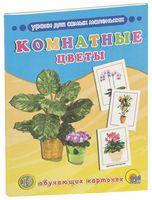 Комнатные цветы. 16 обучающих карточек