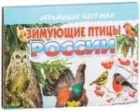 Зимующие птицы России