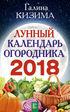 Лунный календарь на 2018 год Фазы Луны 2018 Лунные дни